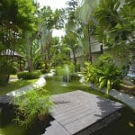 Chaba Samui Resort - Garden Walkway to the beach
